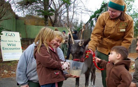 The zoo's Dayle Sullivan-Taylor (left) and Jackie Buchwale (standing) get help with feeding.