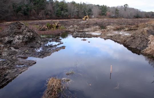 In Plymouth, a backhoe (in far rear of photo) was at work earlier this month turning a cranberry bog back to wetlands to improve water quality for native species.