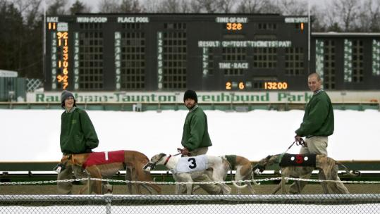 Lead-outs escorted greyhounds onto the track at Raynham Park yesterday during the last day of live racing. Legislation bans greyhound racing in the state as of Jan. 1