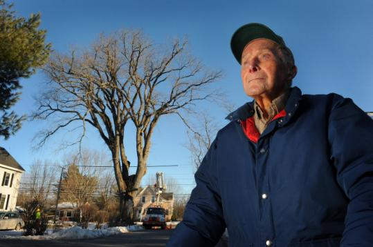 """Nothing lasts forever,'' said caretaker Frank Knight of Yarmouth, Maine, shown with Herbie the elm tree ."