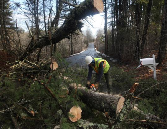 In Rowley yesterday, Brian Herdman, a utility worker with the Rowley Light Department, cut fallen trees that blocked Hillside Street, making the road impassable for traffic.