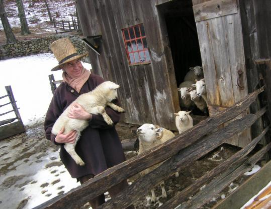 Justin Kennick holds a new arrival at Old Sturbridge Village, where spring activities include visiting the newborn lambs.