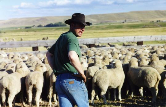 "Pat Connolly is one of two ranch hands that the documentary ""Sweetgrass'' follows on a sheep herd's final drive into the high country of Montana for its annual summer grazing."