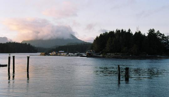 Tofino sits on Vancouver Island's western Clayoquot Sound, which was designated a UNESCO Biosphere Reserve in 2000.
