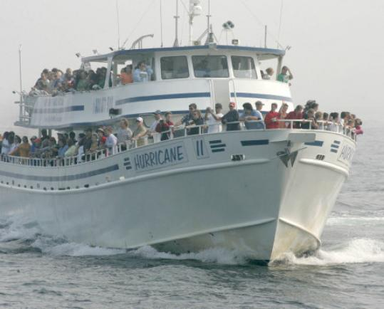 A crowded whale-watching boat off of Cashes Ledge east of Gloucester.