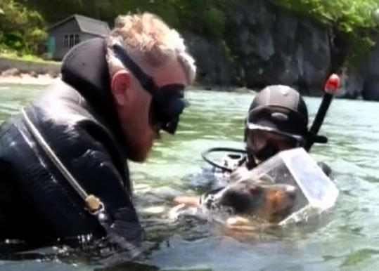 Sergei Gorbunov helped Boniface, his dachshund, before an underwater dive in Slavyanka, Russia. Gorbunov had a diving suit and helmet made for the dog.