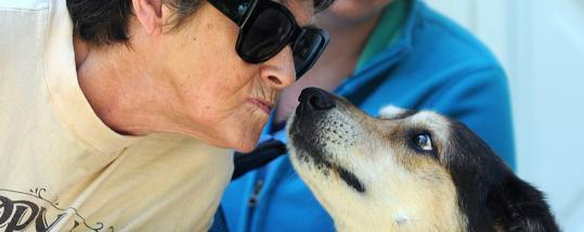 Sharon Conlon of Quincy gets a kiss from Bailey. Fairy DogParents helps pay for Bailey's care.