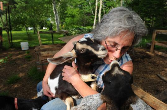 Caitlin Owen Hunter first bought goats in 1979. A co-founder of the Maine Cheese Guild, she makes artisanal goat's cheeses on her Appleton farm.