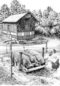 "Illustration from ""Up Tunket Road'' by Philip Ackerman-Leist."