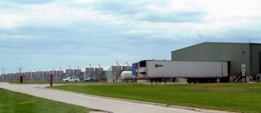A spokeswoman for Wright Egg facilities, near Galt, Iowa, said the company's hens, including any that are potentially infected with salmonella, are still laying nearly 2 million eggs a day. The contents of those eggs are being pasteurized and sold.