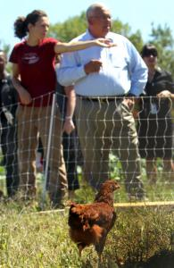 Mayor Menino and Erica LaFountain looked out over the new hen pen.