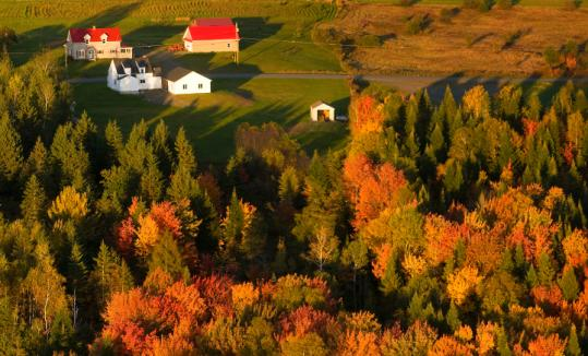 The brilliant colors of fall in New England will be visible earlier this year due to the hot, dry weather.