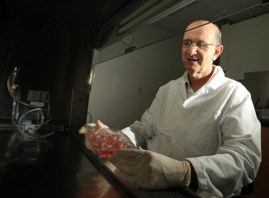 Jonathan Garlick, director of the Division of Cancer Biology and Tissue Engineering at the Tufts School of Dental Medicine, displayed a tray holding skin made from stem cells.