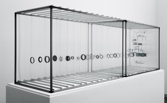 "In Damián Ortega's ""Olympus, 2009,'' every piece of a 35mm camera is pulled apart and held in position by 26 plastic sheets in two display cases."