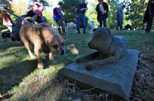 Forest Hills offers tours, such as a walk for dogs and their owners.