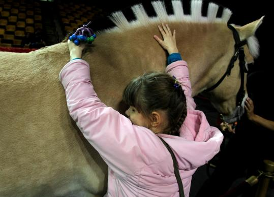 "Ally Foster, a student at the Perkins School for the Blind in Watertown, explored the textures of a circus horse yesterday as part of an annual ""Touch Tour'' arranged by the Ringling Brothers and Barnum & Bailey troupe during its visit to the TD Garden."