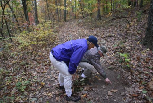 George Giunta and Barbara Roth-Schechter inspected Wylde Woods in Dover yesterday for signs of deer. The town has lifted curbs on bow hunting.