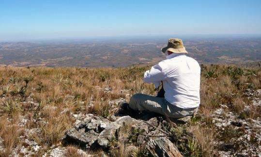 From a mile above Fazenda Toucan Cipó, in Minas Gerais, the view is of the cerrado, Brazil's vast woody savanna, the largest such region in South America and one of the biologically richest savannas in the world.