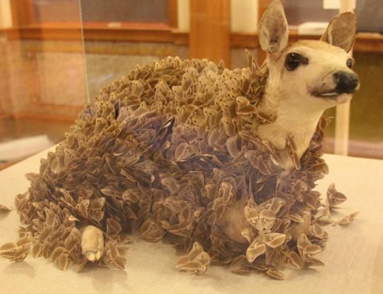 "More than 700 paper moths cover a stuffed fawn in ""Comfort'' by Jennifer Raimondi."