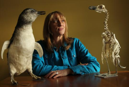 Dyan deNapoli, a.k.a. The Penguin Lady, at her Georgetown home with a stuffed adolescent penguin and the skeleton of another penguin.