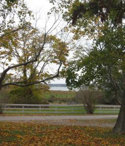 The view from Portsmouth's Greenvale Vineyard, with its 24 acres of vines, stretches to the Sakonnet River and beyond.