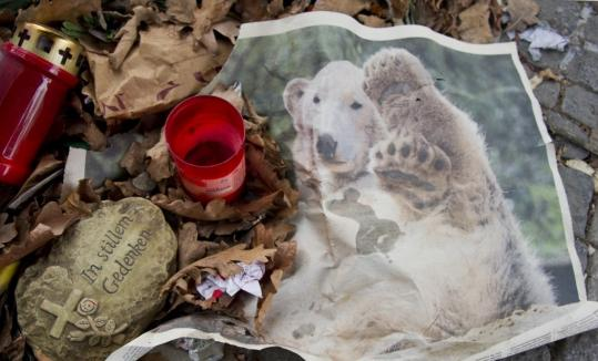 A candle was left at the Berlin zoo in memory of Knut, the polar bear who died last month.