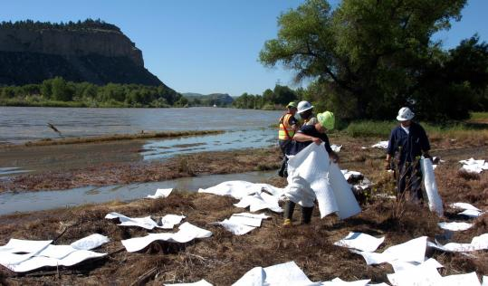 Workers cleaned up oil along the banks of the Yellowstone River in Billings, Mont., yesterday, a day after a pipeline ruptured.