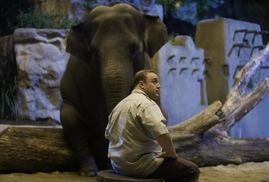 "In ""Zookeeper,'' Kevin James plays a Franklin Park Zoo attendant whose lack of luck in love causes the zoo's animals to reveal that they can talk."