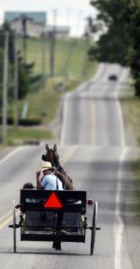 An Amish buggy in Centerville, N.Y. The Amish have added several settlements in New York.