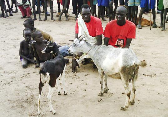 "Surging ""bride prices'' have fueled livestock thefts in South Sudan. About 2,000 people are killed in the raids each year."