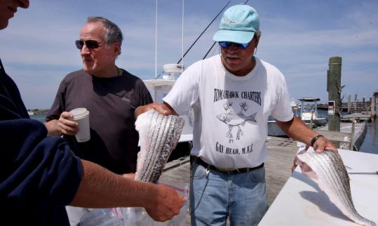 Director Michael Mann (left) with legendary local fishing guide Buddy Vanderhoop yesterday on Martha's Vineyard.