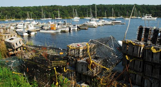 Greenwich Cove is home to marinas, pleasure boats, lobster traps, and much more.