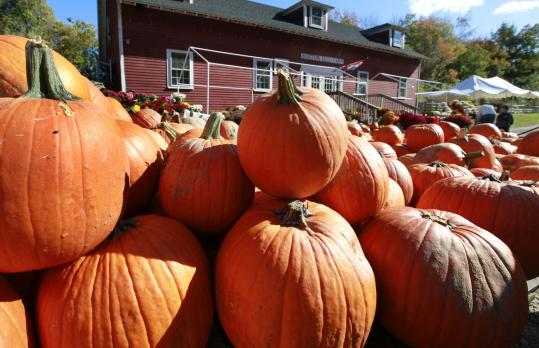 Pumpkins are piled up for Halloween sales at Boston Hill Farm in North Andover.