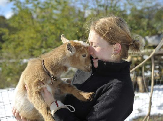 Goat-herd manager Sofia McDonald nuzzles one of the Nigerian dwarf kids purchased by the nonprofit Lexington Community Farm Coalition.