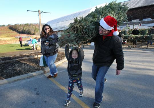 At Cider Hill Farm in Amesbury, Darlene Nicholson and her grandson Daniel Medina, 4, take home a Christmas tree with help from Alex Gramling, founder of Christmas Tree Santas.