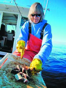 """Donna Monte of Salem and her husband, Bill, are featured on the National Geographic Channel show """"Wicked Tuna.''"""