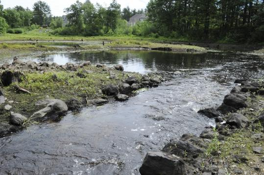A view upstream of Curtis Pond Dam, which was removed in June in an effort to help restore Boston Brook in Middleton.