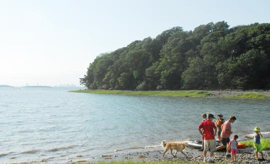 Boston's skyline can be seen from both the shore and trails along World's End in Hingham.