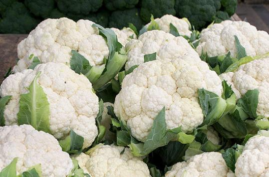 White cauliflower from Wilson Farm