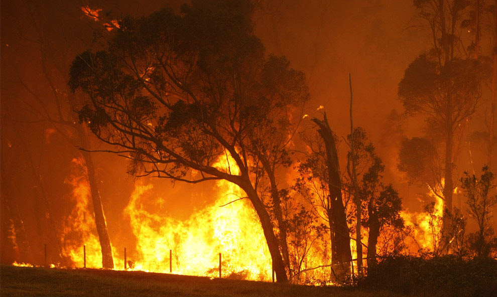 black friday remote control helicopter with Bushfires In Victoria Australi on 14 further Bushfires in victoria australi besides Rc Car Birthday in addition Search PERMIT 20POSTING 20BOX together with Mountain Dew.