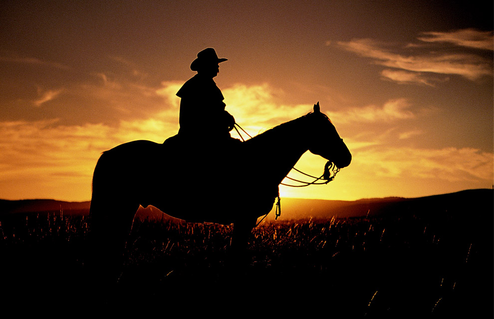 horse rider and sunset