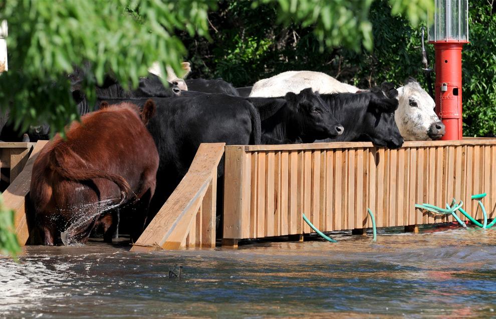 Imagenes de inundaciones