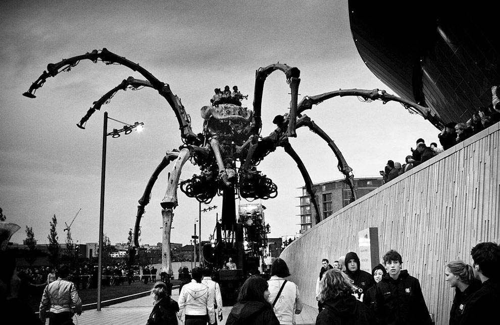 giant spider full movie
