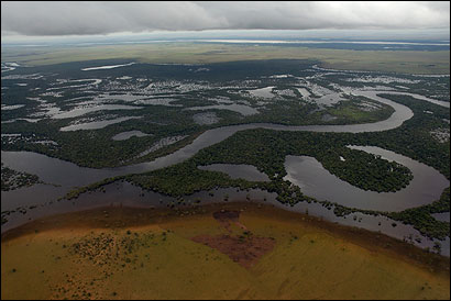 Biologists Conduct A Dolphin Census In Orinoco River The