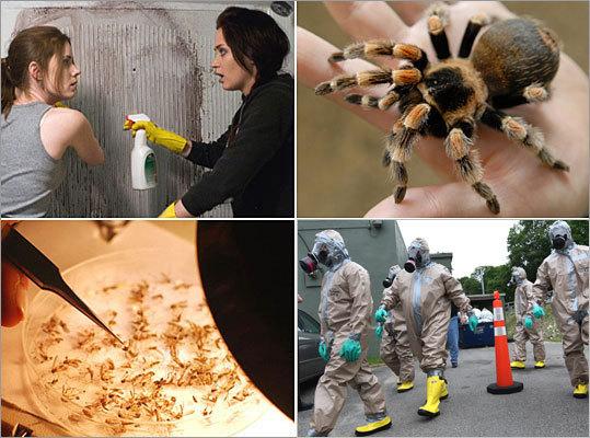 10 scary and creepy jobs - Boston com