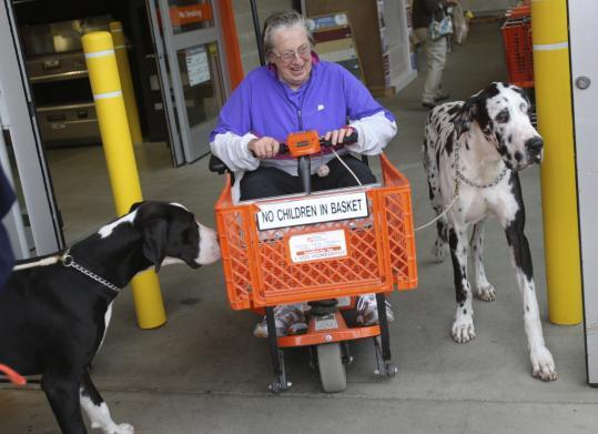 Carlene white service dog project webcam