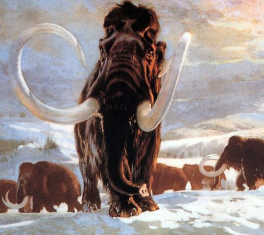 Первые люди на территории нашего края появились в конце верхнего палеолита, примерно 20-18 тыс. лет назад.