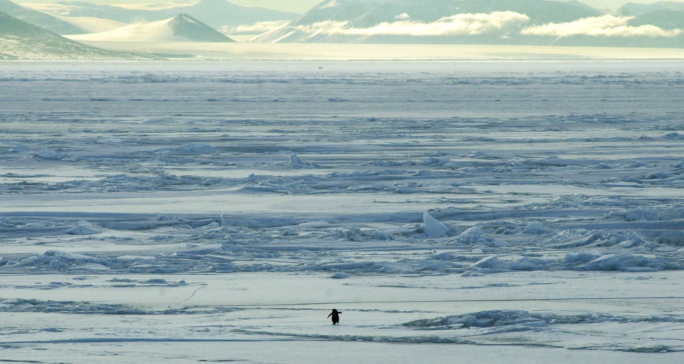 Outstanding Scenes From Antarctica Photos The Big Picture Boston Com Pdpeps Interior Chair Design Pdpepsorg