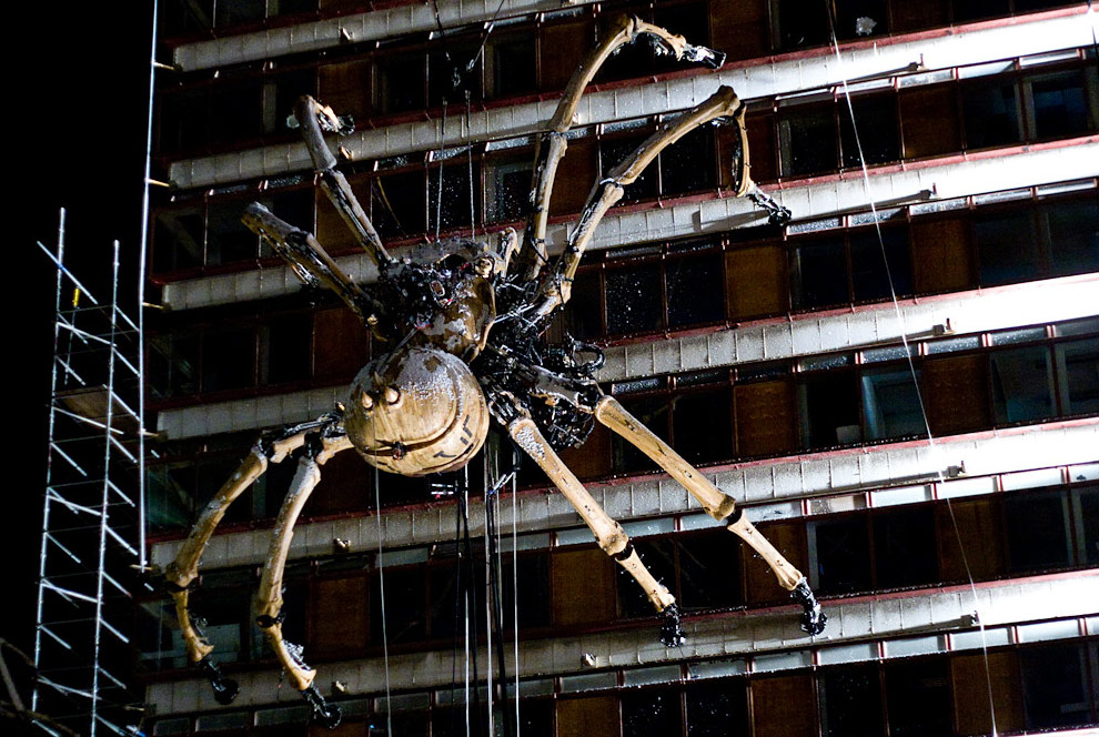 giant spider hanging f...